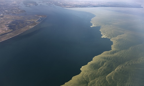 A Look Inside How NOAA Tracks Harmful Algal Blooms