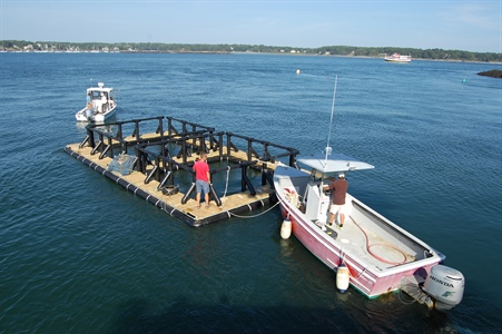National Sea Grant Aquaculture Initiative: 2020 Update
