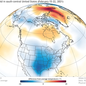 Understanding the Arctic polar vortex