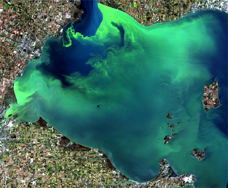 Imagery of the Western Lake Erie HAB, 2017