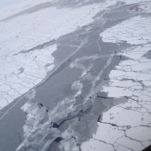 Climate models show carbon emission mitigation could slow Arctic temperature increases