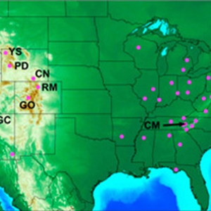 An East Side, West Side Story: Ozone Pollution in the United States