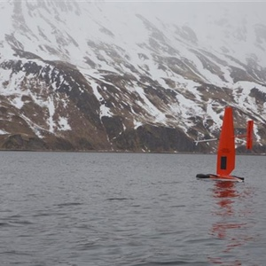 Scientists deploy autonomous sailing vessels to study whales, fish and seals