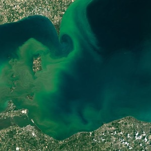 Tracking harmful algal blooms in Lake Erie