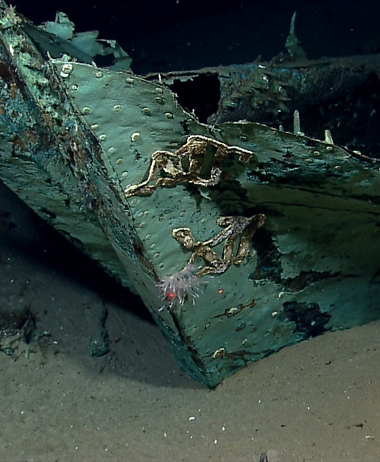 NOAA, BOEM: Historic, 19th century shipwreck discovered in northern...