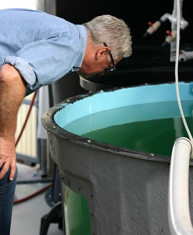 Sea Grant announces 93 million for aquaculture research and industry...