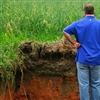 Kirk Brock examines a root pit in his field.